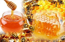 manfaat madu alami untuk pengobatan